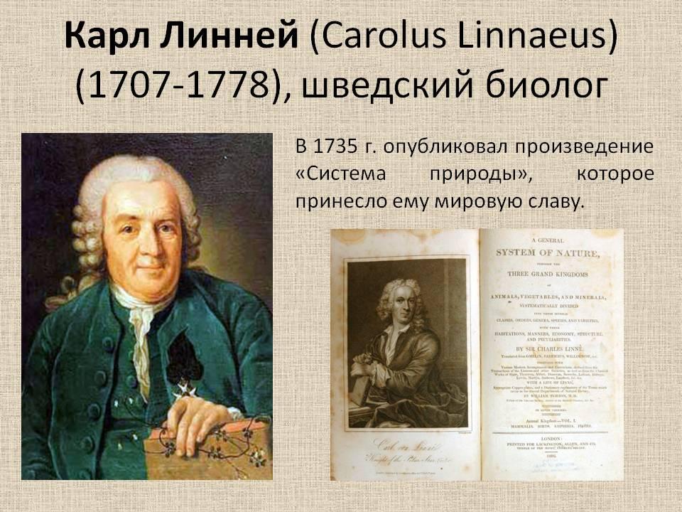 0006-006-Karl-Linnej-Carolus-Linnaeus-1707-1778-shvedskij-biolog